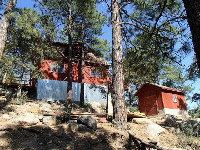 23257 S Moss Road, Crown King, AZ 86343 (MLS #5624801) :: Group 46:10