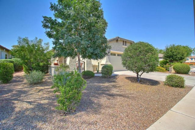 26202 W Wahalla Lane, Buckeye, AZ 85396 (MLS #5624816) :: Sibbach Team - Realty One Group