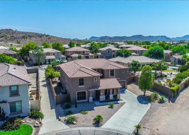 461 W Chuckwagon Lane, San Tan Valley, AZ 85143 (MLS #5624869) :: RE/MAX Home Expert Realty