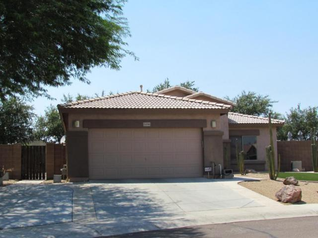 21296 N 94TH Lane, Peoria, AZ 85382 (MLS #5624870) :: Kortright Group - West USA Realty