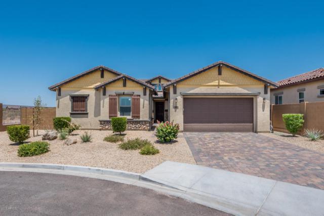 8106 W Redbird Road, Peoria, AZ 85383 (MLS #5624876) :: Kortright Group - West USA Realty