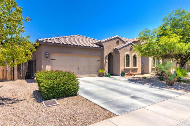 38563 N Reynosa Drive, San Tan Valley, AZ 85140 (MLS #5624906) :: RE/MAX Home Expert Realty