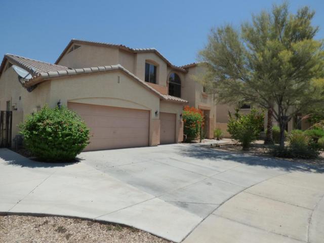 14430 W Windsor Avenue, Goodyear, AZ 85395 (MLS #5624963) :: 10X Homes