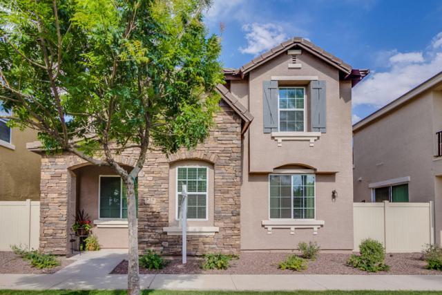 828 S Reber Avenue, Gilbert, AZ 85296 (MLS #5624977) :: RE/MAX Home Expert Realty