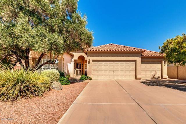 715 N Apollo Court, Chandler, AZ 85224 (MLS #5625009) :: RE/MAX Home Expert Realty