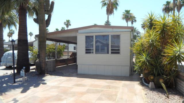 518 Douglas Avenue, Mesa, AZ 85205 (MLS #5625010) :: 10X Homes