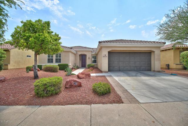 22617 N Arrellaga Drive, Sun City West, AZ 85375 (MLS #5625050) :: Desert Home Premier