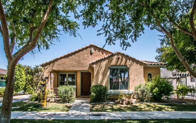2662 E Tamarisk Street, Gilbert, AZ 85296 (MLS #5625058) :: RE/MAX Home Expert Realty