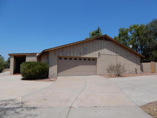 12202 N 60TH Street, Scottsdale, AZ 85254 (MLS #5625093) :: 10X Homes