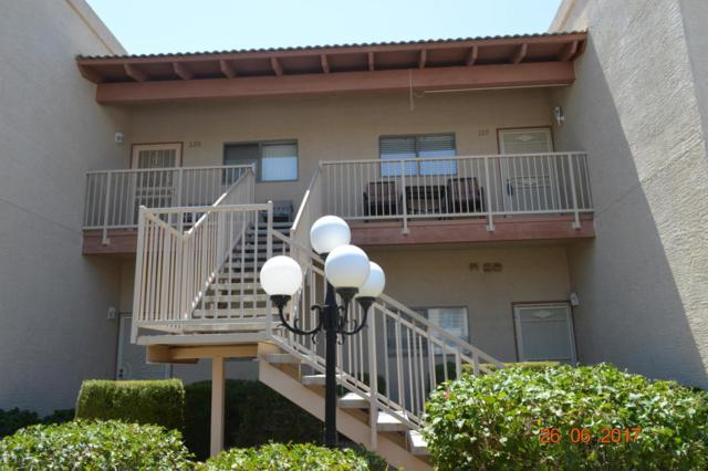 205 N 74TH Street #219, Mesa, AZ 85207 (MLS #5625123) :: RE/MAX Home Expert Realty