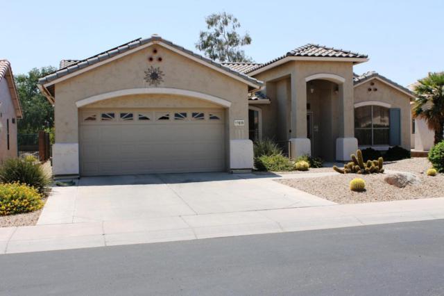 17839 W Club Vista Drive, Surprise, AZ 85374 (MLS #5625157) :: Desert Home Premier