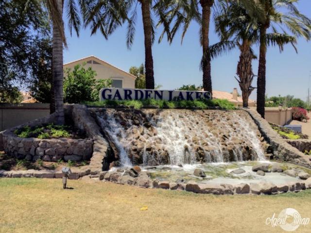 11134 W Ashland Way W, Avondale, AZ 85392 (MLS #5625162) :: 10X Homes