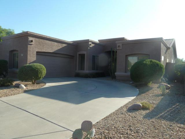 3980 S Emerson Street, Chandler, AZ 85248 (MLS #5625166) :: RE/MAX Home Expert Realty