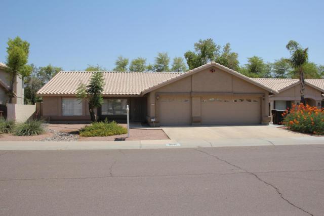 8645 W Meadow Drive, Peoria, AZ 85382 (MLS #5625171) :: 10X Homes