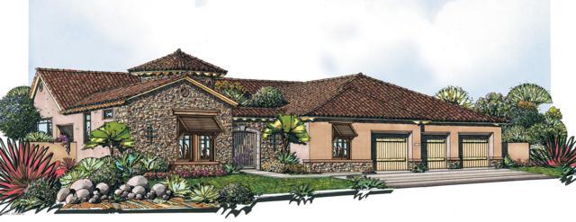 2335 N Waverly, Mesa, AZ 85207 (MLS #5625179) :: RE/MAX Home Expert Realty