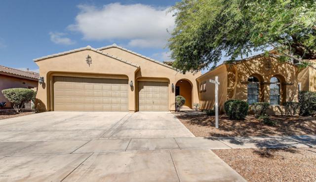 3819 S Skyline Drive, Gilbert, AZ 85297 (MLS #5625188) :: RE/MAX Home Expert Realty