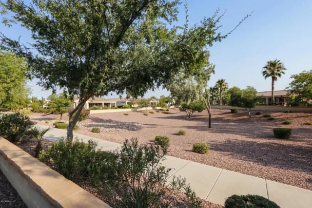13442 W Nogales Drive, Sun City West, AZ 85375 (MLS #5625203) :: Desert Home Premier