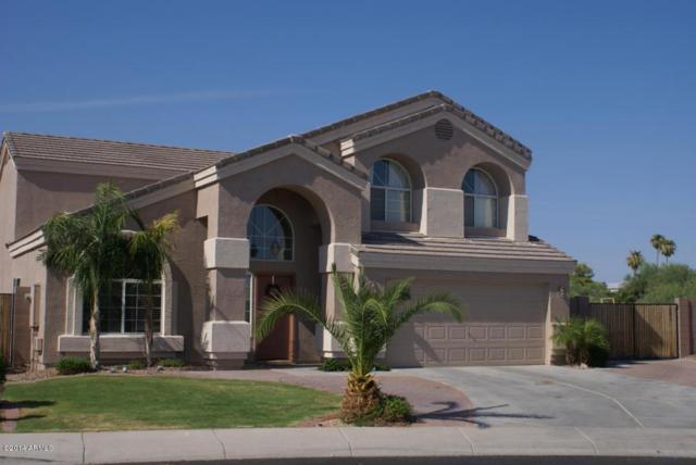 18151 N 111TH Circle, Surprise, AZ 85378 (MLS #5625216) :: Desert Home Premier