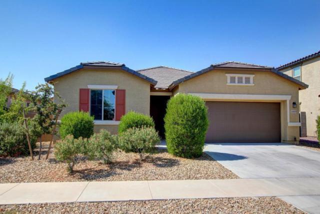 16839 W Adams Street, Goodyear, AZ 85338 (MLS #5625270) :: Essential Properties, Inc.