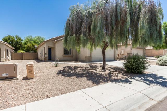 15443 W Maui Lane, Surprise, AZ 85379 (MLS #5625310) :: Desert Home Premier