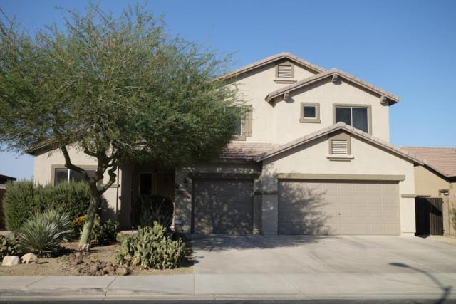 15921 N 164TH Lane, Surprise, AZ 85388 (MLS #5625313) :: Desert Home Premier