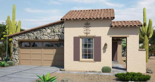 20761 W Hillcrest Boulevard, Buckeye, AZ 85396 (MLS #5625388) :: Desert Home Premier