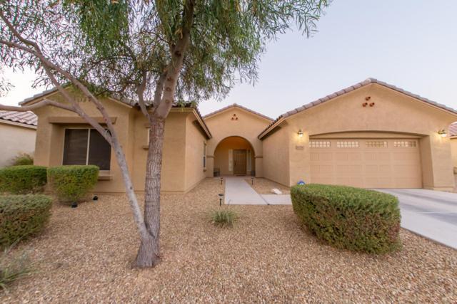16780 W Watkins Street, Goodyear, AZ 85338 (MLS #5625396) :: Essential Properties, Inc.