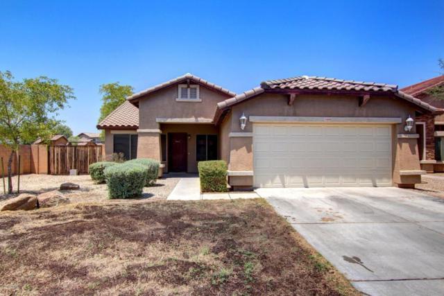 25608 W Pioneer Street, Buckeye, AZ 85326 (MLS #5625448) :: Desert Home Premier