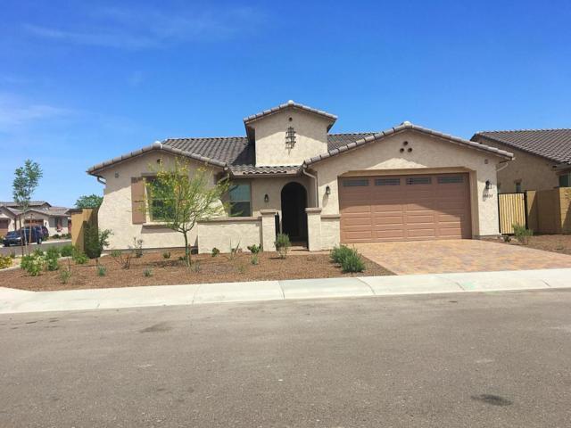 19042 N 54TH Lane, Glendale, AZ 85308 (MLS #5625457) :: Desert Home Premier