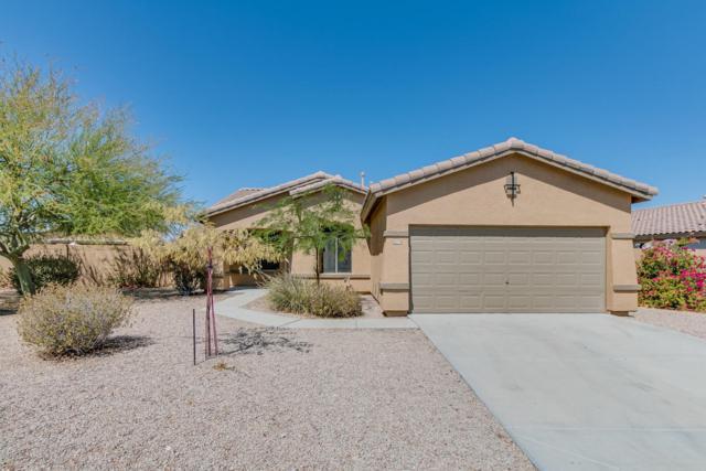 10278 S 175TH Avenue, Goodyear, AZ 85338 (MLS #5625461) :: Essential Properties, Inc.