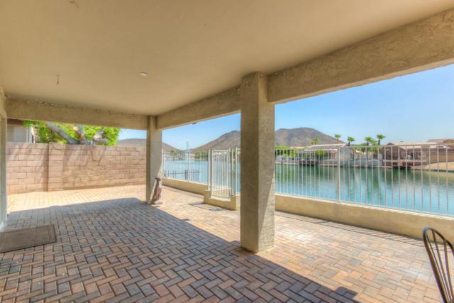20205 N 55TH Avenue, Glendale, AZ 85308 (MLS #5625514) :: Desert Home Premier