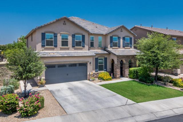 15620 W Mackenzie Drive, Goodyear, AZ 85395 (MLS #5625692) :: Essential Properties, Inc.
