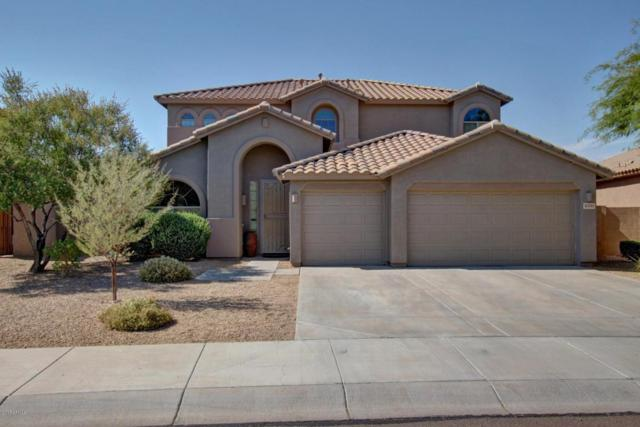 8350 W Molly Lane, Peoria, AZ 85383 (MLS #5625729) :: Essential Properties, Inc.