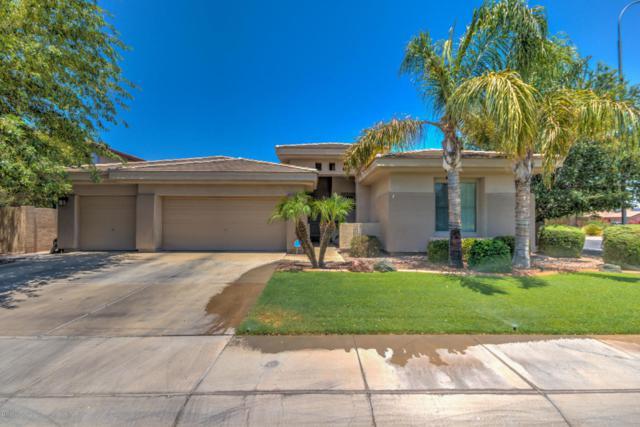 3802 E Virgo Place, Chandler, AZ 85249 (MLS #5625827) :: Santizo Realty Group