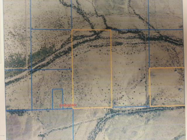 XXXX S 423 Avenue, Tonopah, AZ 85354 (MLS #5626380) :: Brett Tanner Home Selling Team
