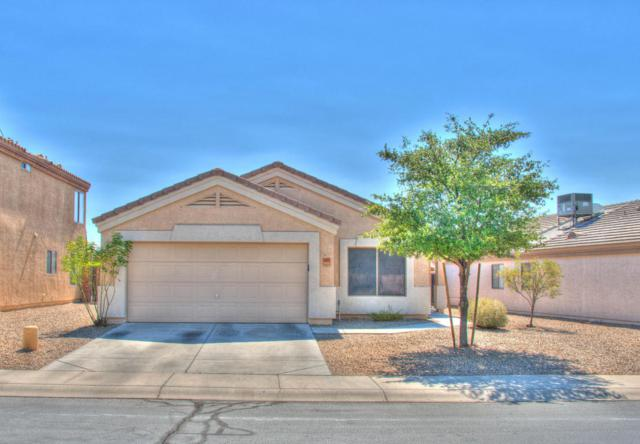 14825 N 125TH Avenue, El Mirage, AZ 85335 (MLS #5626801) :: The Everest Team at My Home Group