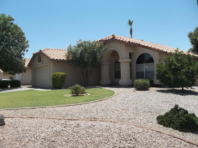 6849 E Lakeview Avenue, Mesa, AZ 85209 (MLS #5627973) :: The Bill and Cindy Flowers Team