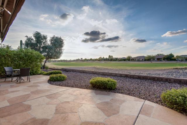 27472 N 125TH Avenue, Peoria, AZ 85383 (MLS #5628110) :: Desert Home Premier