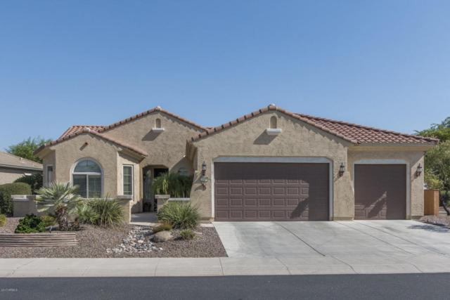 26438 W Runion Lane, Buckeye, AZ 85396 (MLS #5628492) :: Desert Home Premier