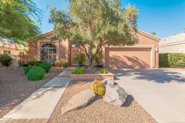 7352 E Lakeview Avenue, Mesa, AZ 85209 (MLS #5628698) :: The Bill and Cindy Flowers Team