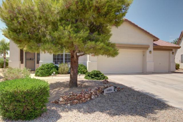 11692 W Hawk Court, Surprise, AZ 85378 (MLS #5630552) :: The Everest Team at My Home Group
