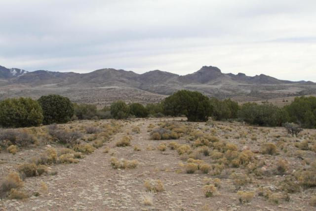 Lot 231 Bacanora Trail, Wikieup, AZ 85360 (MLS #5630600) :: The Daniel Montez Real Estate Group