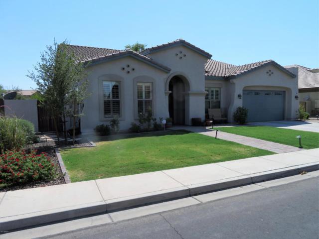 6697 S Banning Street, Gilbert, AZ 85298 (MLS #5631761) :: The Kenny Klaus Team