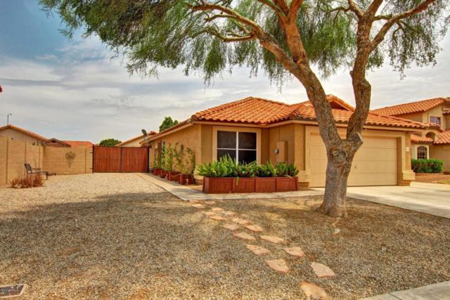 151 S Norfolk Circle, Mesa, AZ 85206 (MLS #5632166) :: The Bill and Cindy Flowers Team