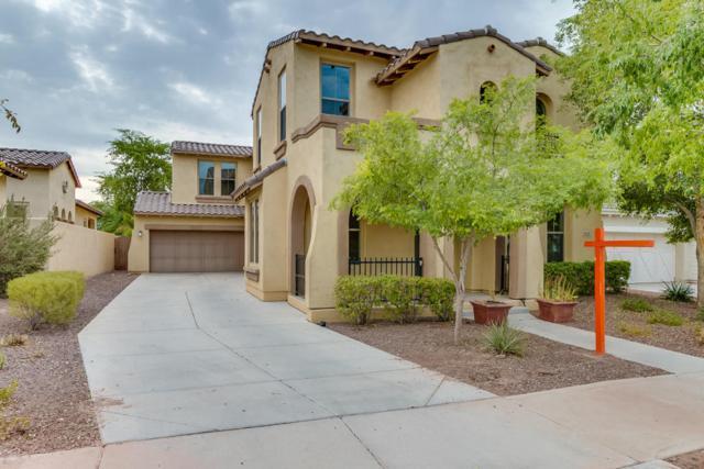 3123 N Black Rock Road, Buckeye, AZ 85396 (MLS #5632754) :: Kortright Group - West USA Realty