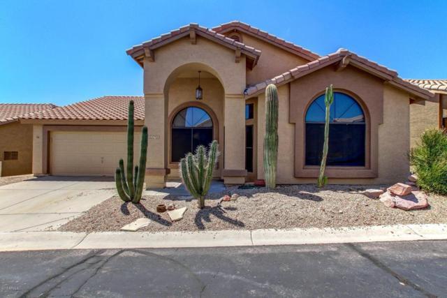 5298 S Marble Drive, Gold Canyon, AZ 85118 (MLS #5633129) :: The Pete Dijkstra Team