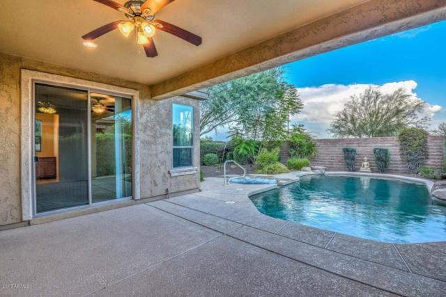 28083 N 123rd Lane, Peoria, AZ 85383 (MLS #5633398) :: The Worth Group