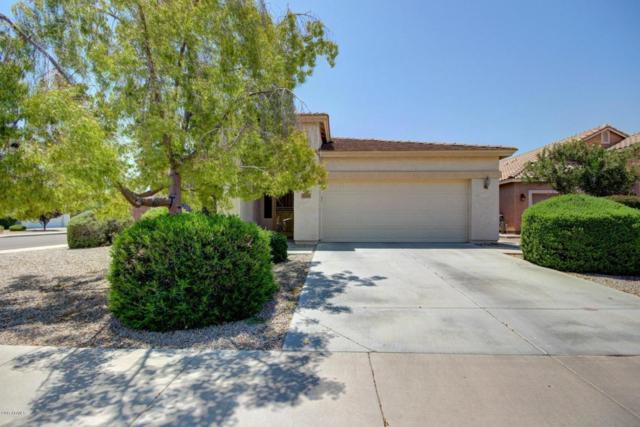 3230 N 126TH Avenue, Avondale, AZ 85392 (MLS #5633675) :: Kortright Group - West USA Realty