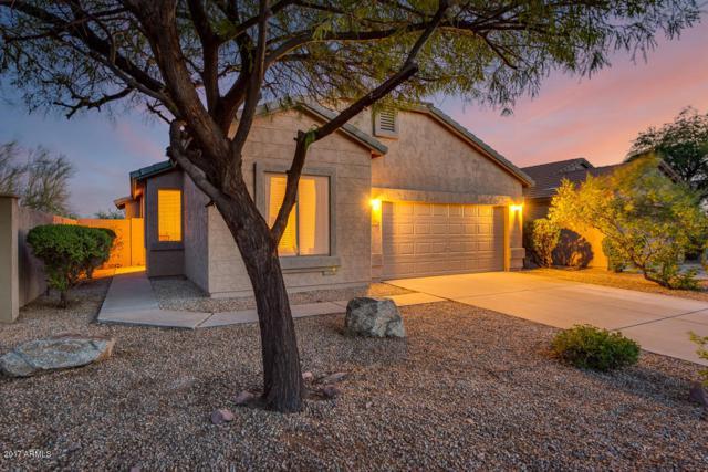 6573 E Las Animas Trail, Gold Canyon, AZ 85118 (MLS #5633706) :: The Pete Dijkstra Team
