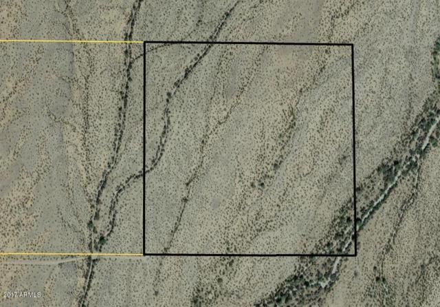79300 S 59TH Street, Salome, AZ 85348 (MLS #5633845) :: Brett Tanner Home Selling Team